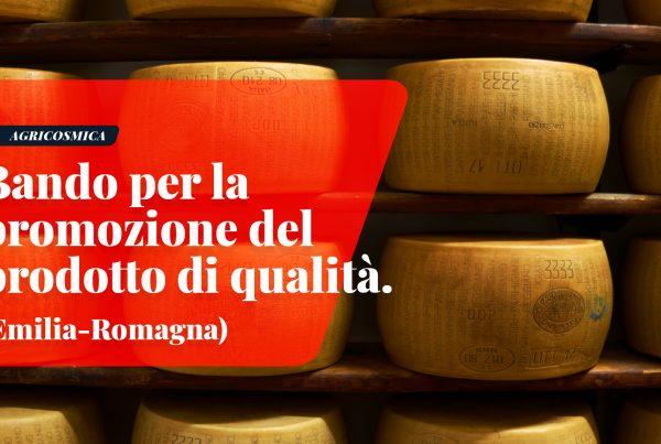 Emilia-Romagna: Bando per promozione IGP DOP STG bio e prodotti di Qualità